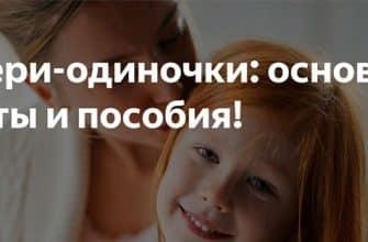 Мать одиночка после развода : какие льготы положены и как их оформить фото